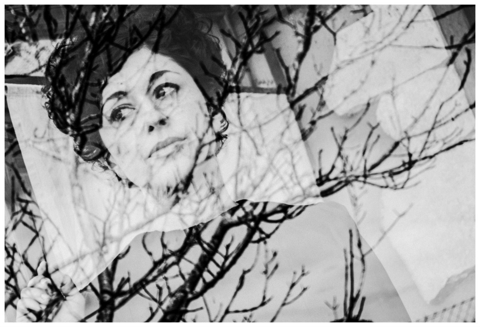 Carmen Mehnai Trust freebird