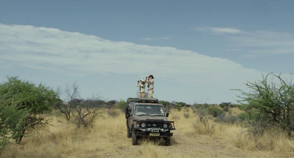 safari-seidl
